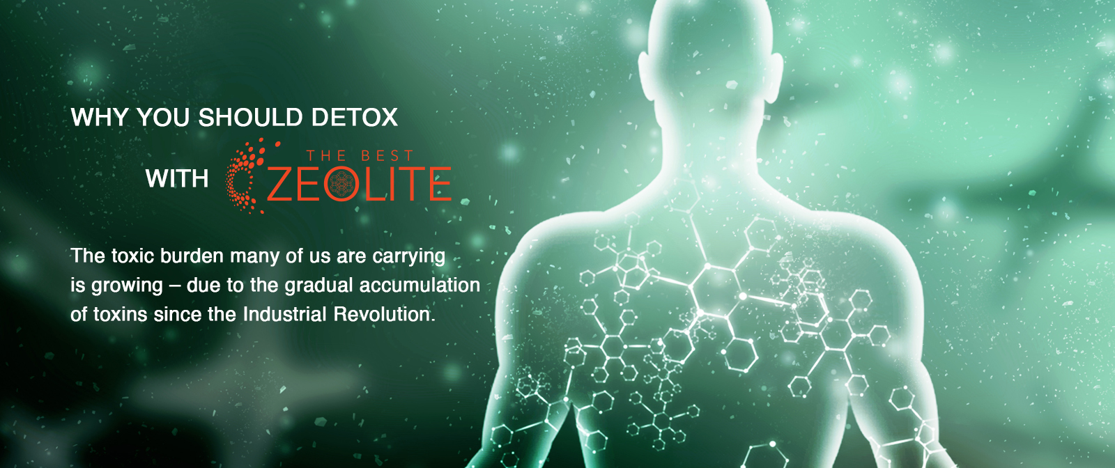 Why You Should Detox With Zeolite