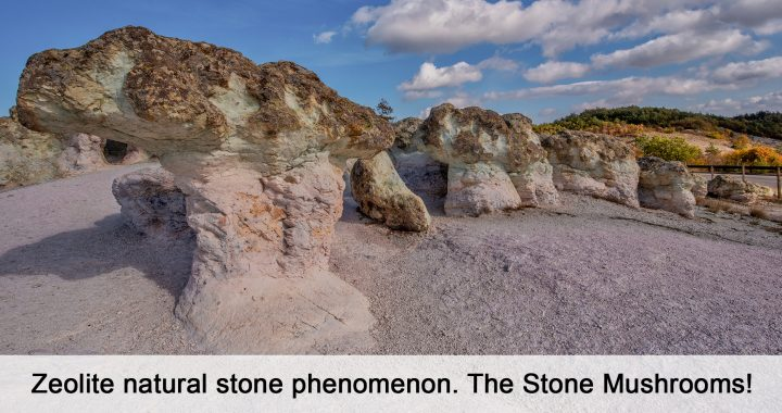 Zeolite natural stone phenomenon. The Stone Mushrooms!
