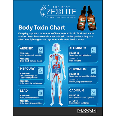 The Body Toxins Chart